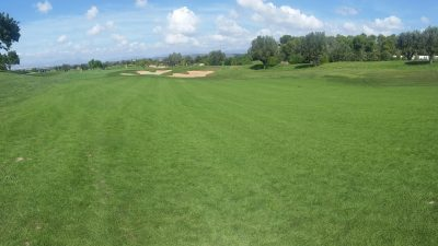 The Benefits of Interseeding Turfgrass