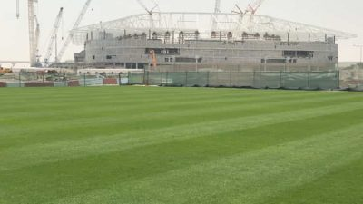 Platinum TE™ Paspalum Selected as Exclusive Turfgrass of FIFA World Cup 2022