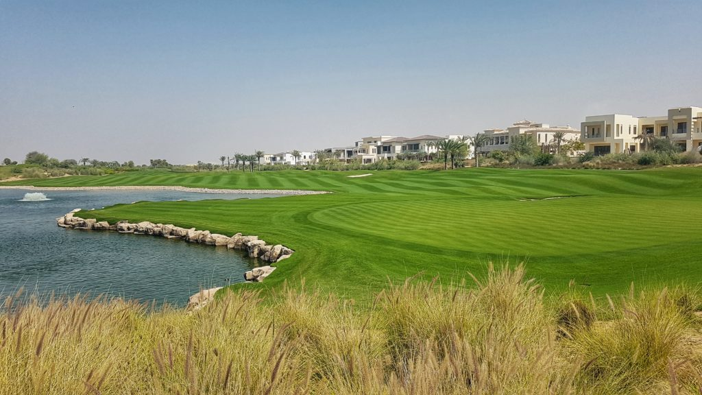 Dubai Hills featuring Pure Dynasty Seeded Paspalum