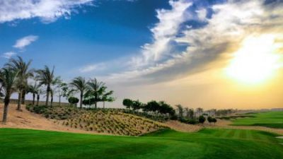 The Real Scoop on Paspalum – Frequently Asked Questions