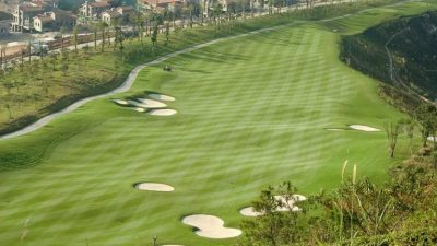 IMG Completes Guangzhou Dragon Lake Golf Club with Wall-to-Wall Platinum TE Paspalum