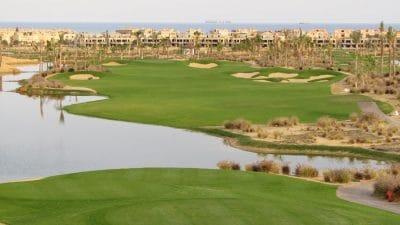Platinum TE Paspalum Meets Challenges of Egypt's El Ein Bay Golf Development