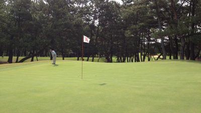 Koga Golf Club Pioneers MiniVerde™ Greens in Japan