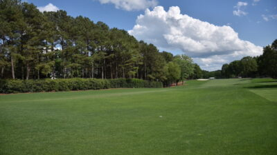 Reaching the Goal for Optimal Turf Year-Round with Overseeding