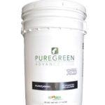 PureGreen Creeping Bentgrass