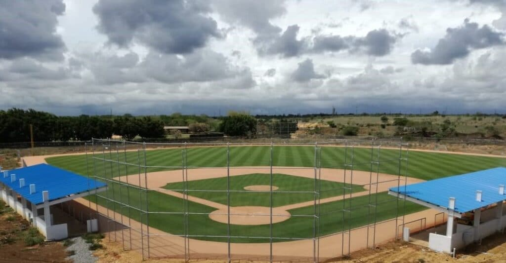 baseball sports field paspalum turfgrass