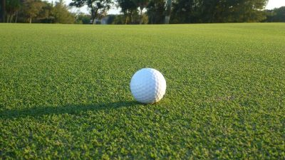 Ultradwarf Bermudagrass Greens - Past, Present, and Future