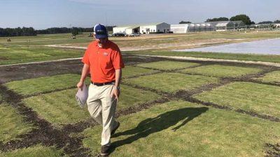 Ultrafine™ Zoysia Program Shoots for Golf's Perfect Grass